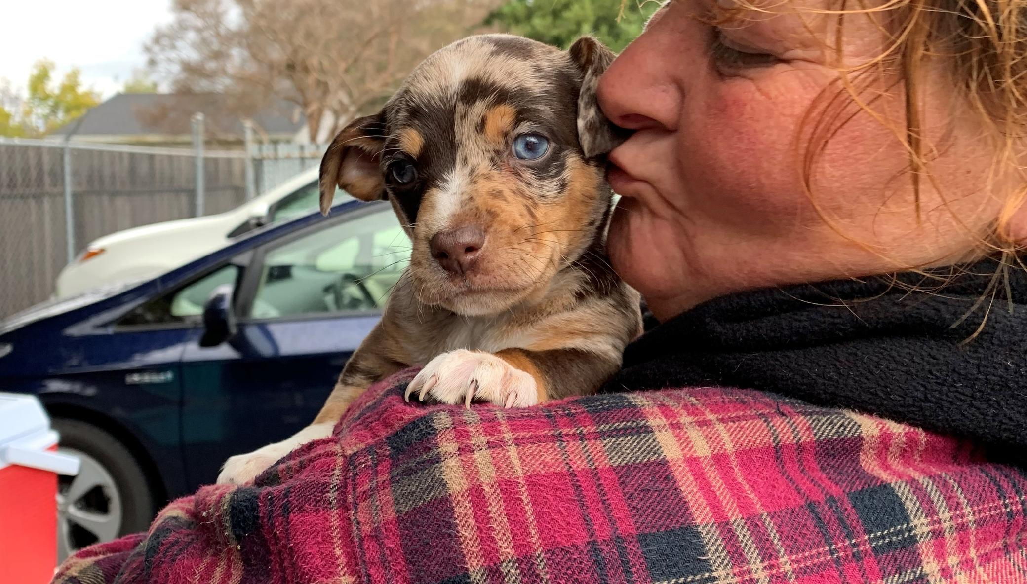Help the most under-served pets in Sacramento