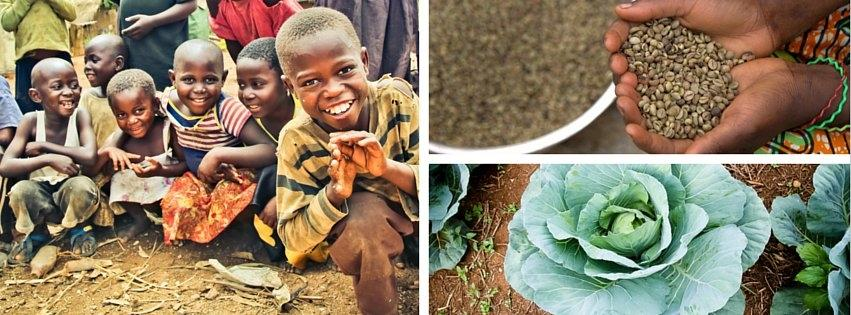 Building Agribusinesses to end Poverty in DR Congo
