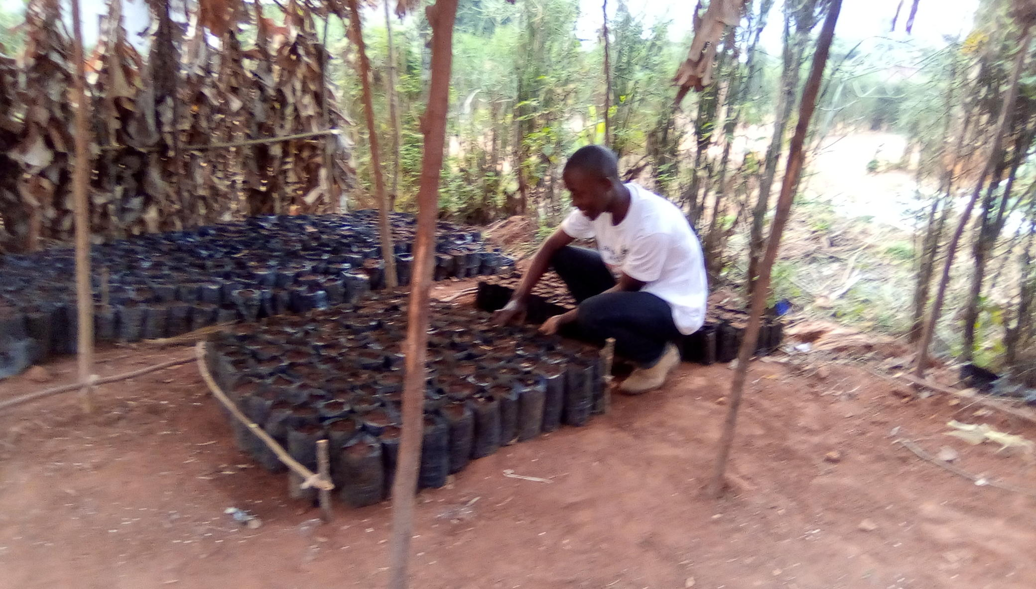 Burundi Climate Change Resilience Support project