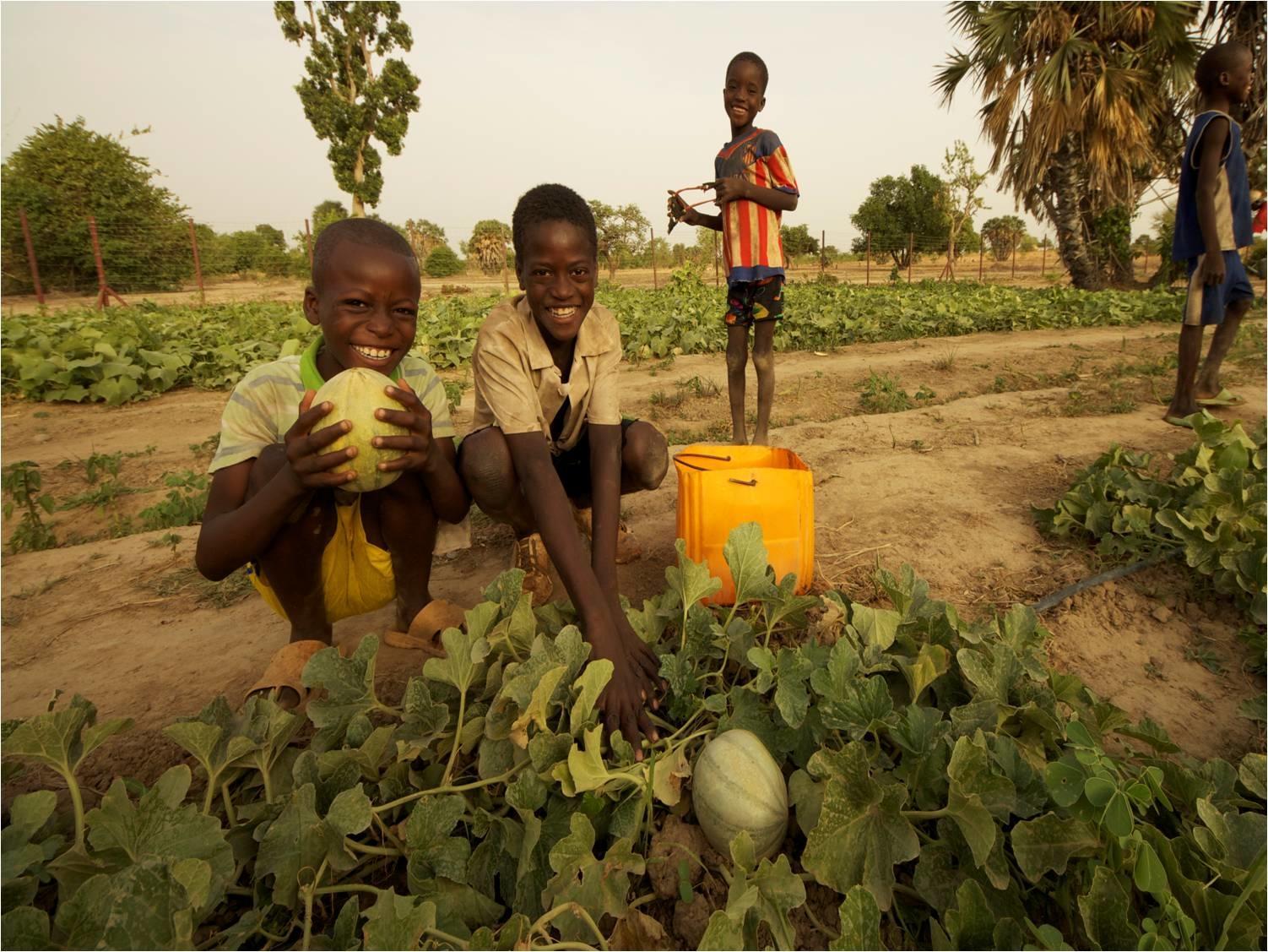 COVID-19 Emergency AID for Rural&Nomadic Nigeriens