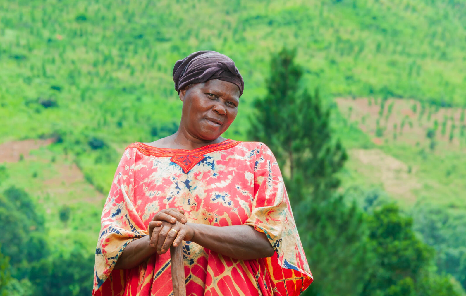 Climate change adoption for 100 farmers in Uganda