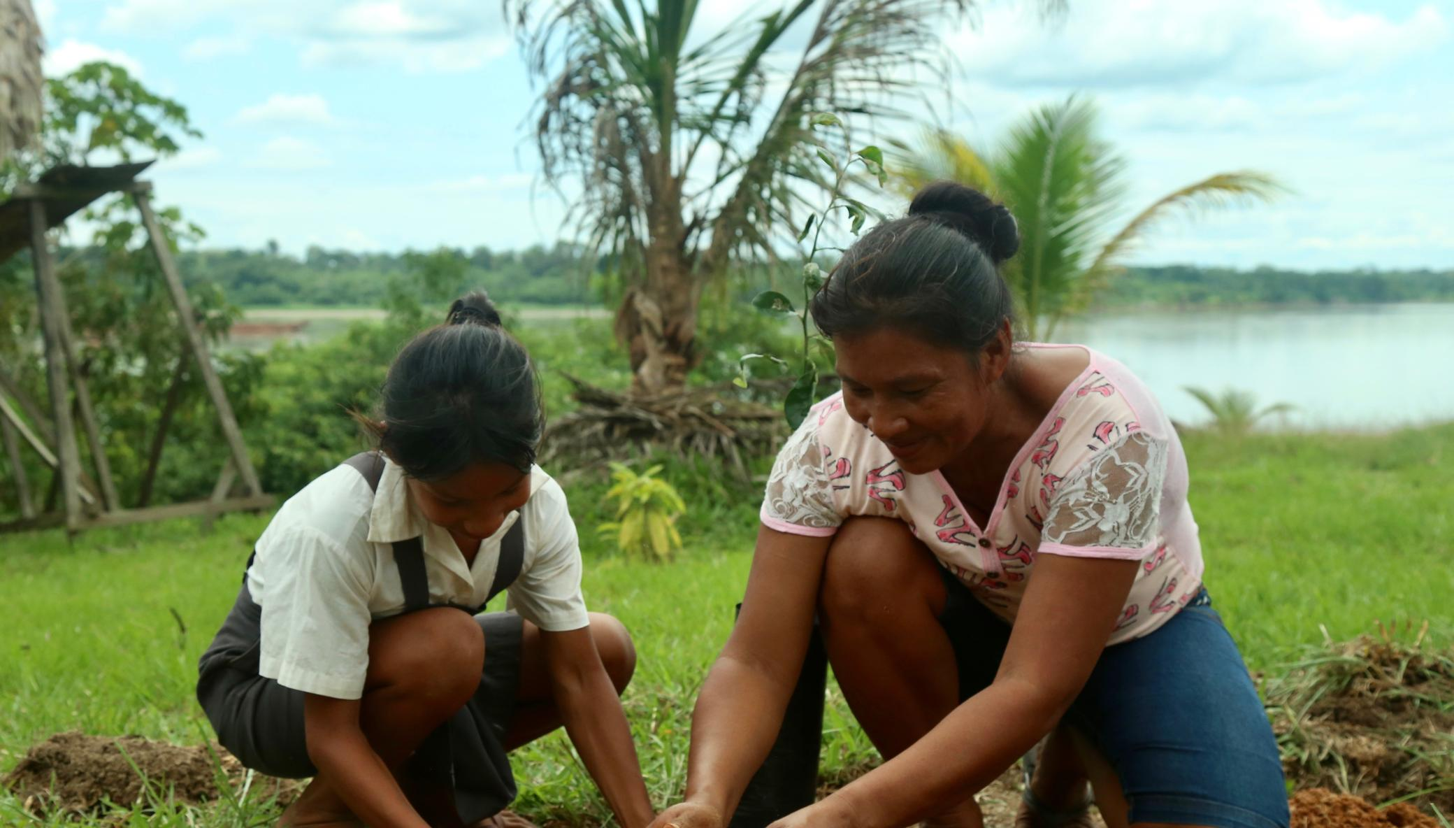 Fruit trees for Peruvian Amazon families