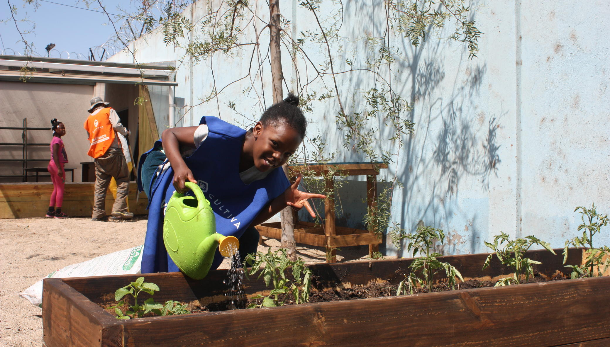 Help 350 families grow food to overcome COVID-19