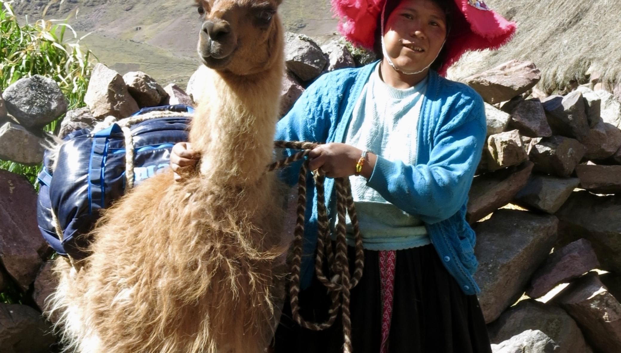Help 85+ llama farmers in Peru access fair work