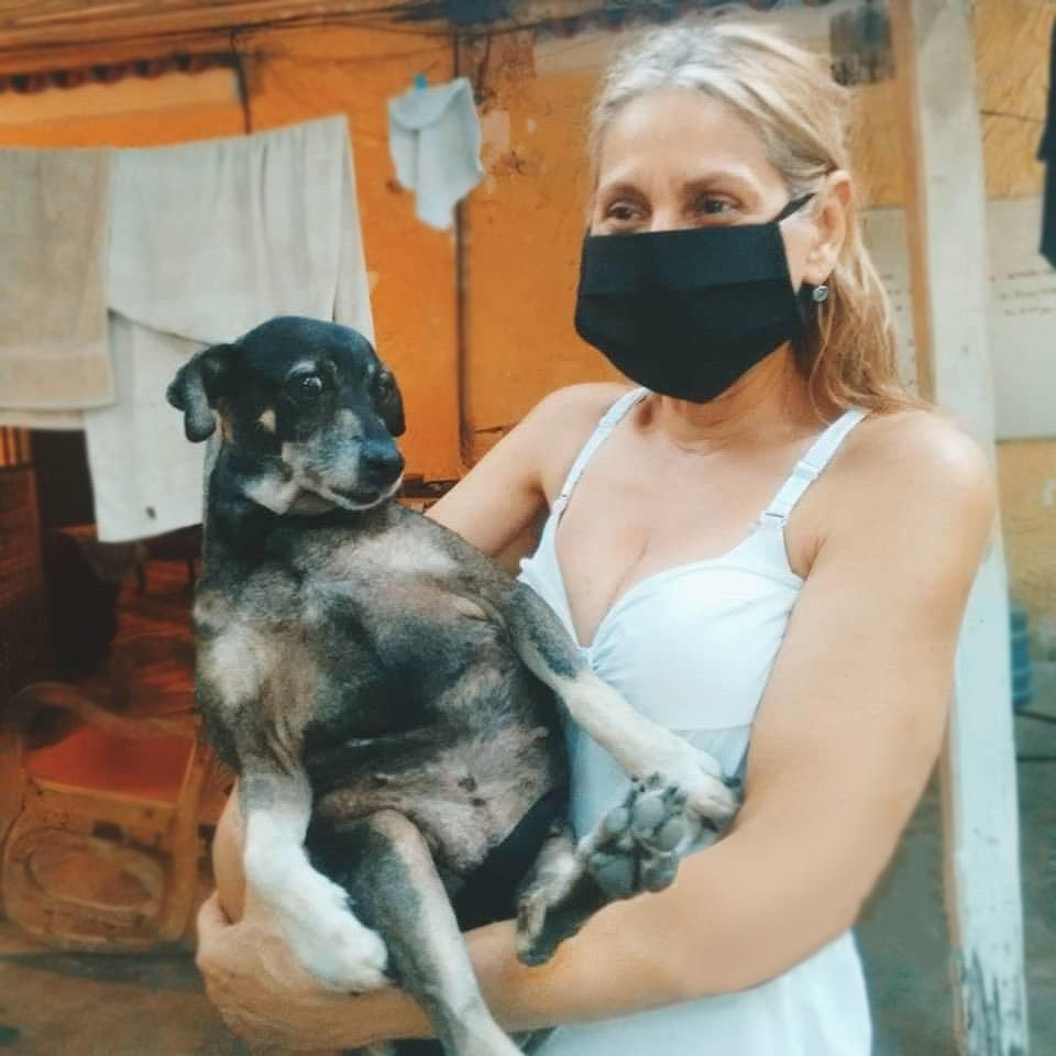 Help animals in Venezuela as result of COVID19
