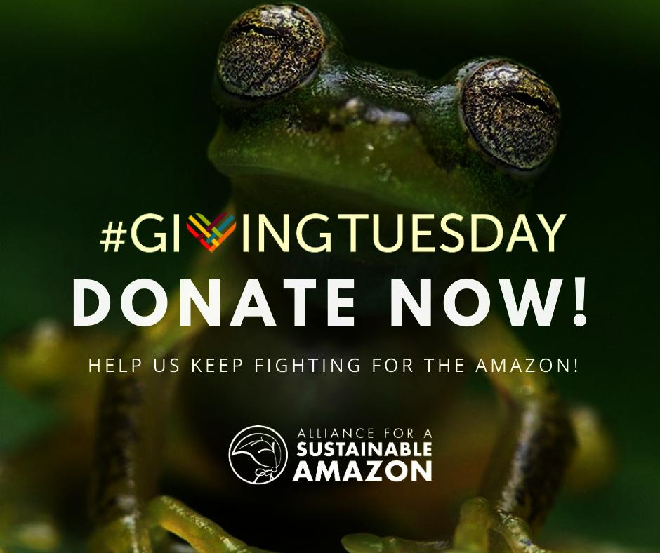 Help us keep fighting for the Amazon!