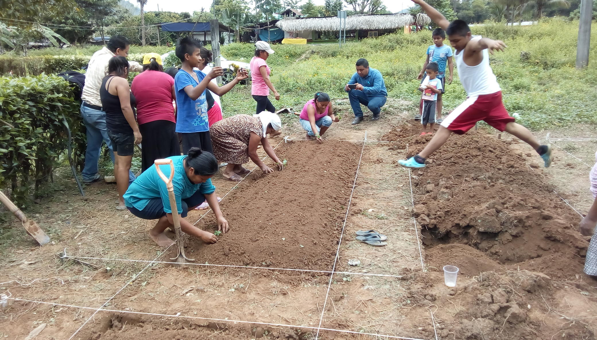 Home Gardens for 100 Families, Oaxaca, Mexico