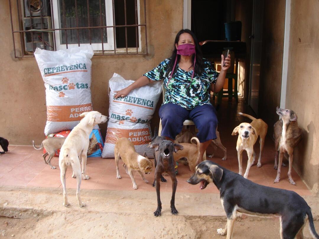 Improve 3K community dog&cat feeding in Venezuela
