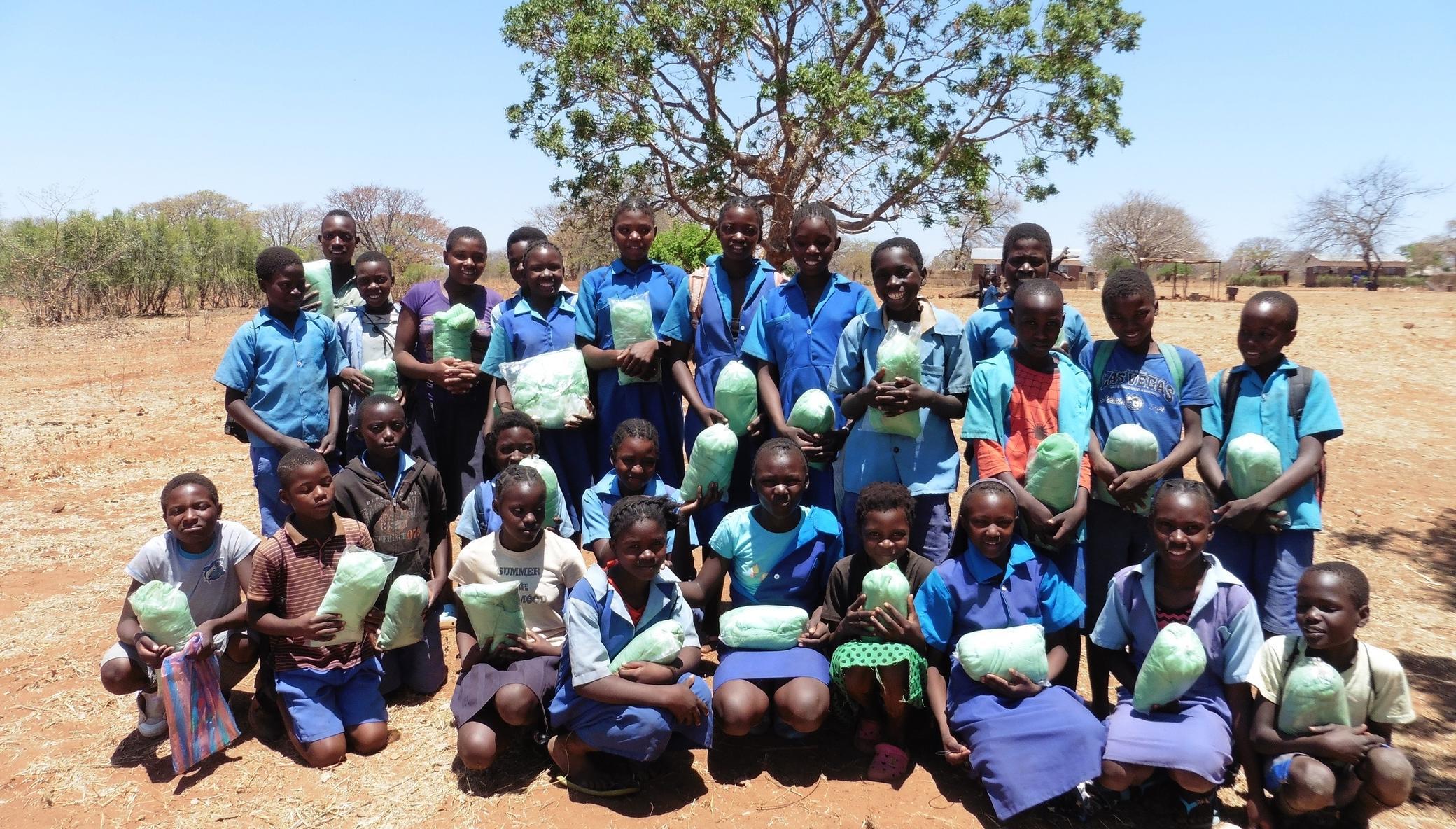 Malaria Prevention Saves Lives