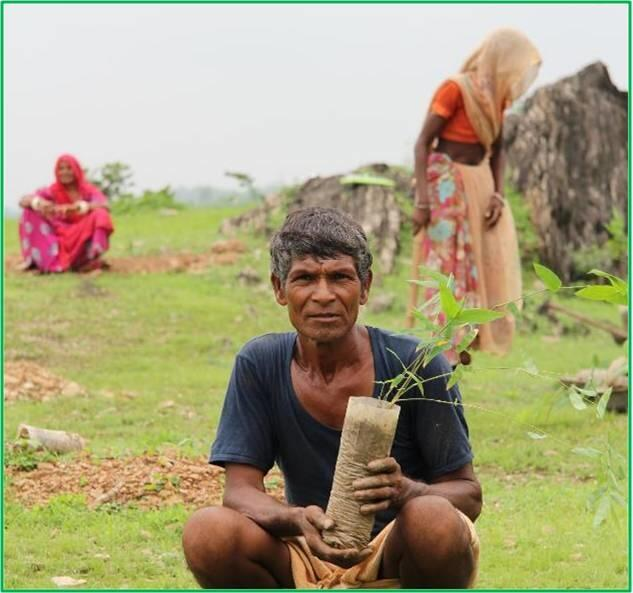 Plant 10,000 Trees to Reduce Carbon Footprints