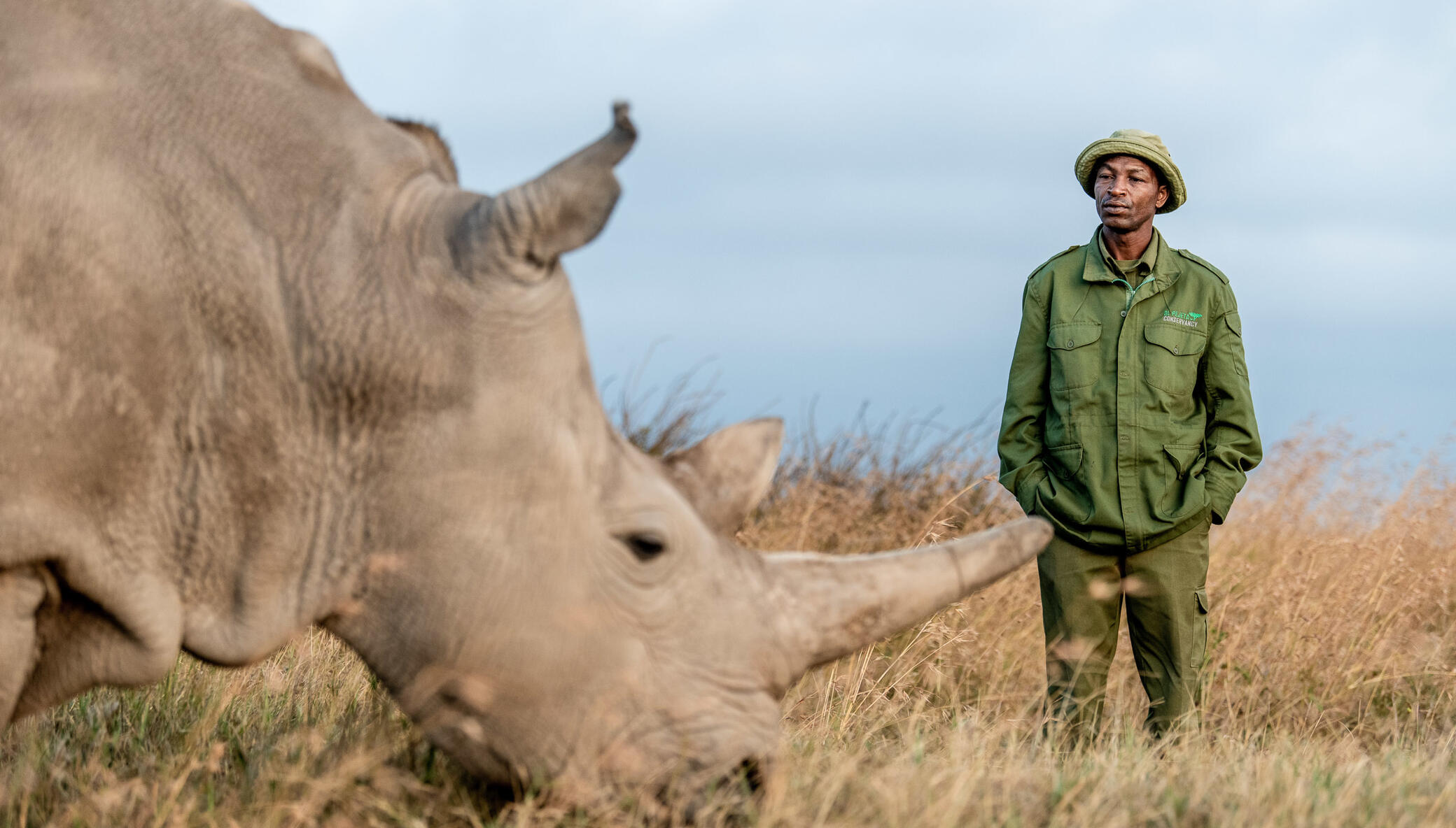 The Next Phase of our Northern White Rhino Program