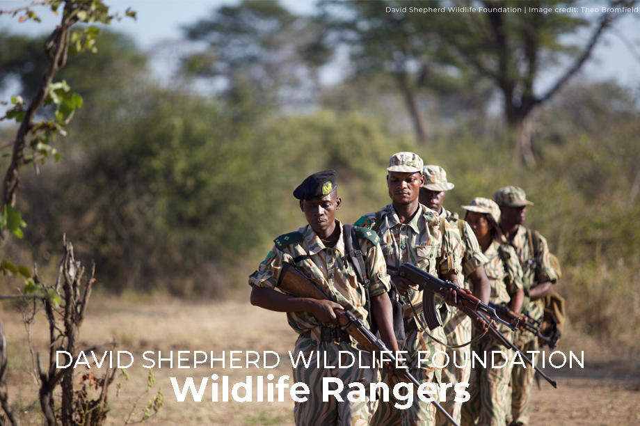 Wildlife Rangers