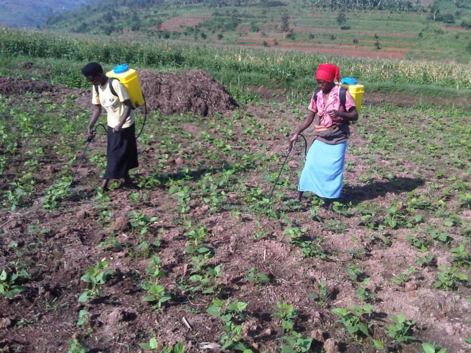 Women Empowerment for Sustainable Development