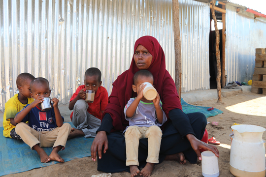 Supporting IDPs in Somalia in the response to the COVID-19 Emergency